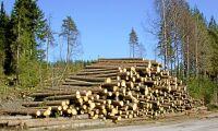 Fler vill avverka skog