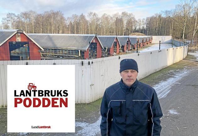 Niklas Olsson, uppfödare utanför Skara och ordförande i branschorganisationen Svensk Mink.