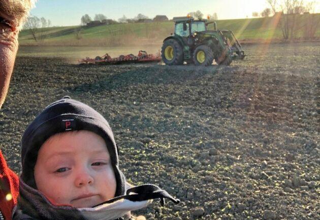 Oscar Segerslätt, 1 år, vill gärna titta på när morfars traktor vinterharvar.