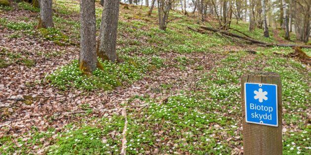Skogsstyrelsen borde läsa på om grundlagen