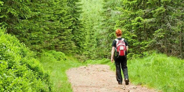 Naturen förbättrar din hälsa – 2 timmar per vecka räcker
