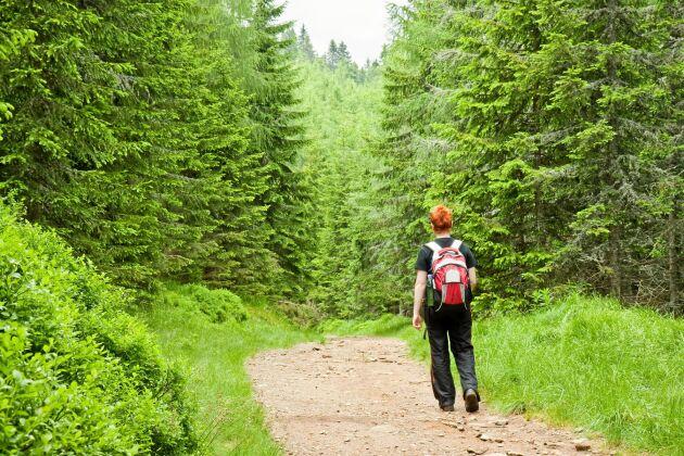 Två timmar i naturen per vecka räcker för att dra nytta av hälsofördelar, visar en svensk-brittisk studie.