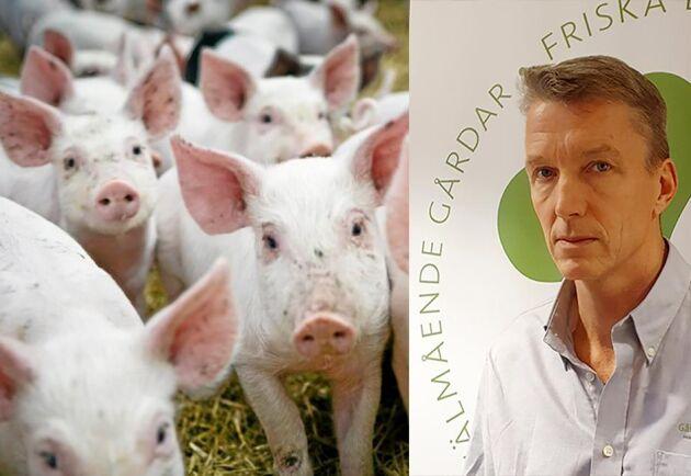 Djurskyddskontrollerna vid slakt bör snarast ses över, skriver Gård och Djurhälsans VD Kees de Jong.