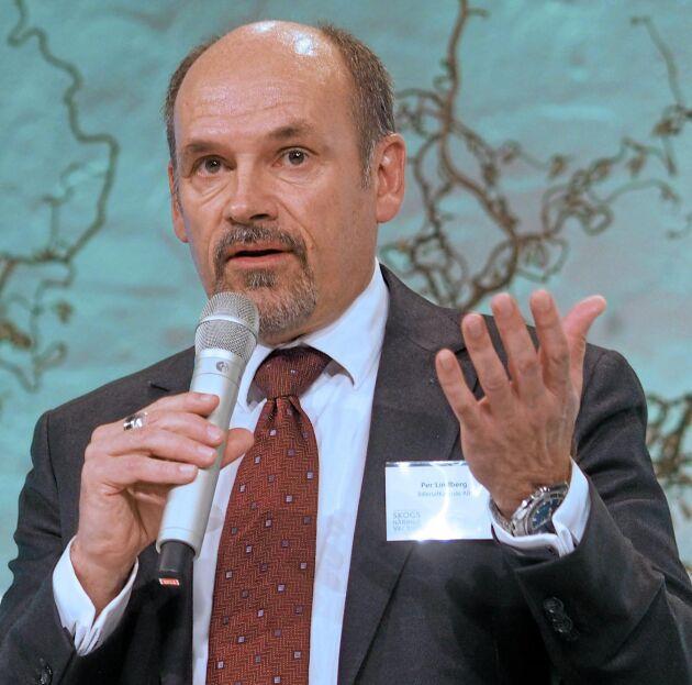 Blir skogsägare. Billerud Korsnäs med VD Per Lindberg köper tillbaka skogen som såldes till Bergvik 2004.
