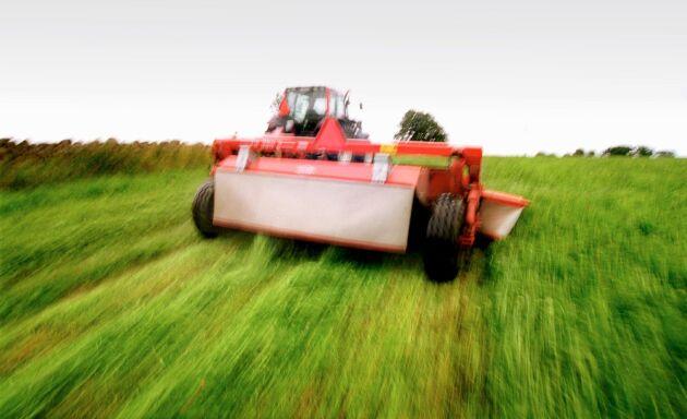 Sommarens torka har drabbat vissa sörmländska bönder hårt. Vallskörden har bara blivit 10-20 procent mot normalår.