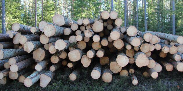 Skogsägare ska ha samma rättigheter som alla andra