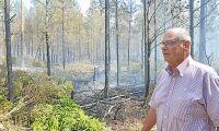 Några gnistor - sen brann skogen