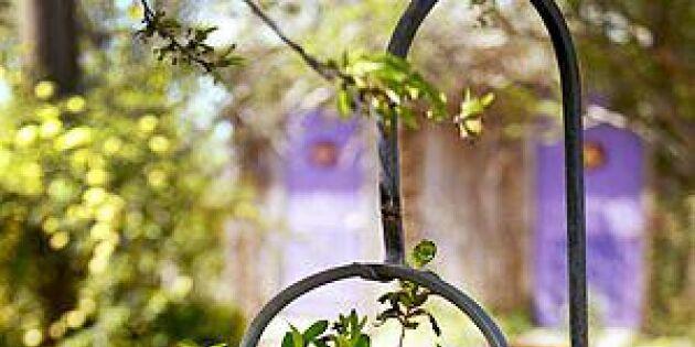 16 lantliga planteringar av återvunnet material – perfekt i trädgården!