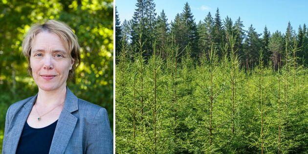"""""""Vi måste också prata om att skogen växer"""""""