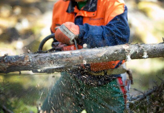 Arbete i skogen är ett exempel där skyddsutrustning krävs.
