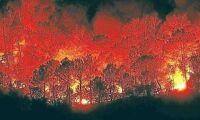 Dansk till svars för 141 mordbränder