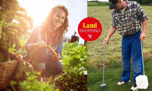 Den svenska uppfinningen Slugmaster kan plocka 100 sniglar i minuten. Köp den i Lands webbshop.