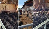 Länsstyrelsen hotar gård med vite