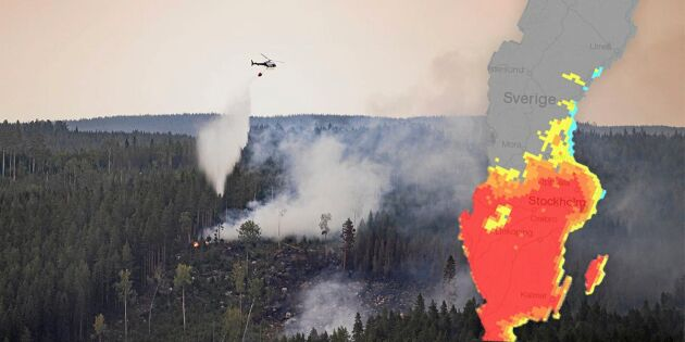 Skogsbränderna ovanligt tidiga i år –därför börjar det brinna