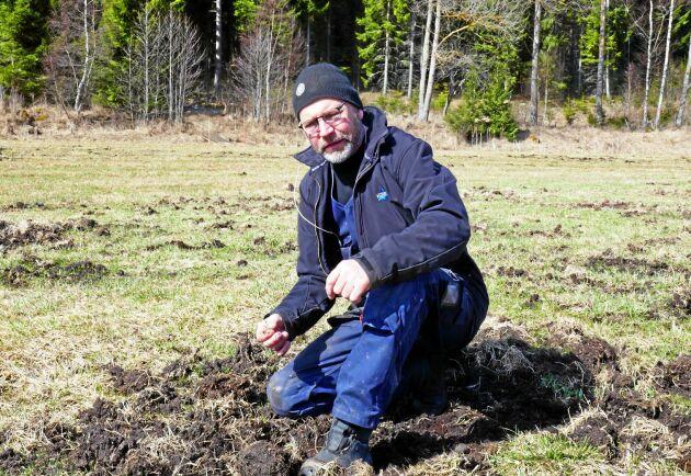 Bengt Jakobsson bedömer att vildsvinsskadorna på hans mark kostar honom kring 100000 kronor per år. Arkivbild.