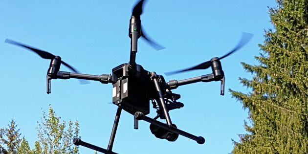 Ny kamera ska tidigt upptäcka skog med skaderisk