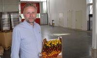 Största tomatodlaren blir ännu större