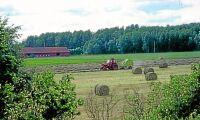 Studie ska skapa tillväxt i nordvästra Skåne