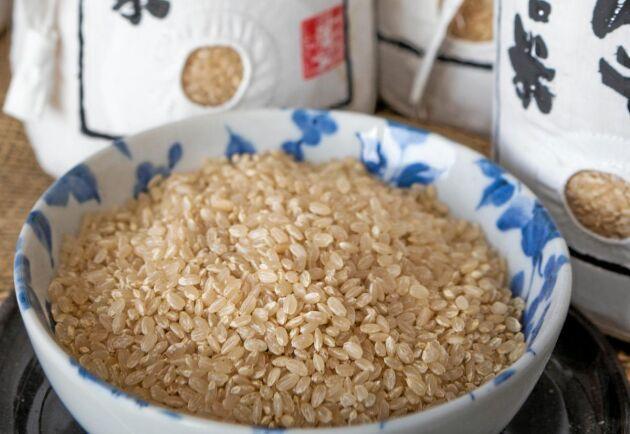 Ekologiskt ris hos familjen Suto i Fukushima.