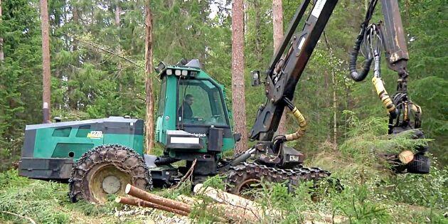Gammal Timberjack perfekt på liten skogsgård