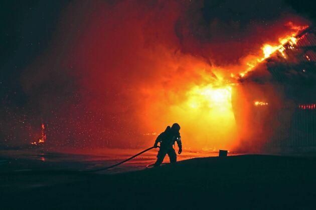 Branden upptäcktes av två eleversom larmade räddningstjänsten och försökte rädda djur och byggnader.